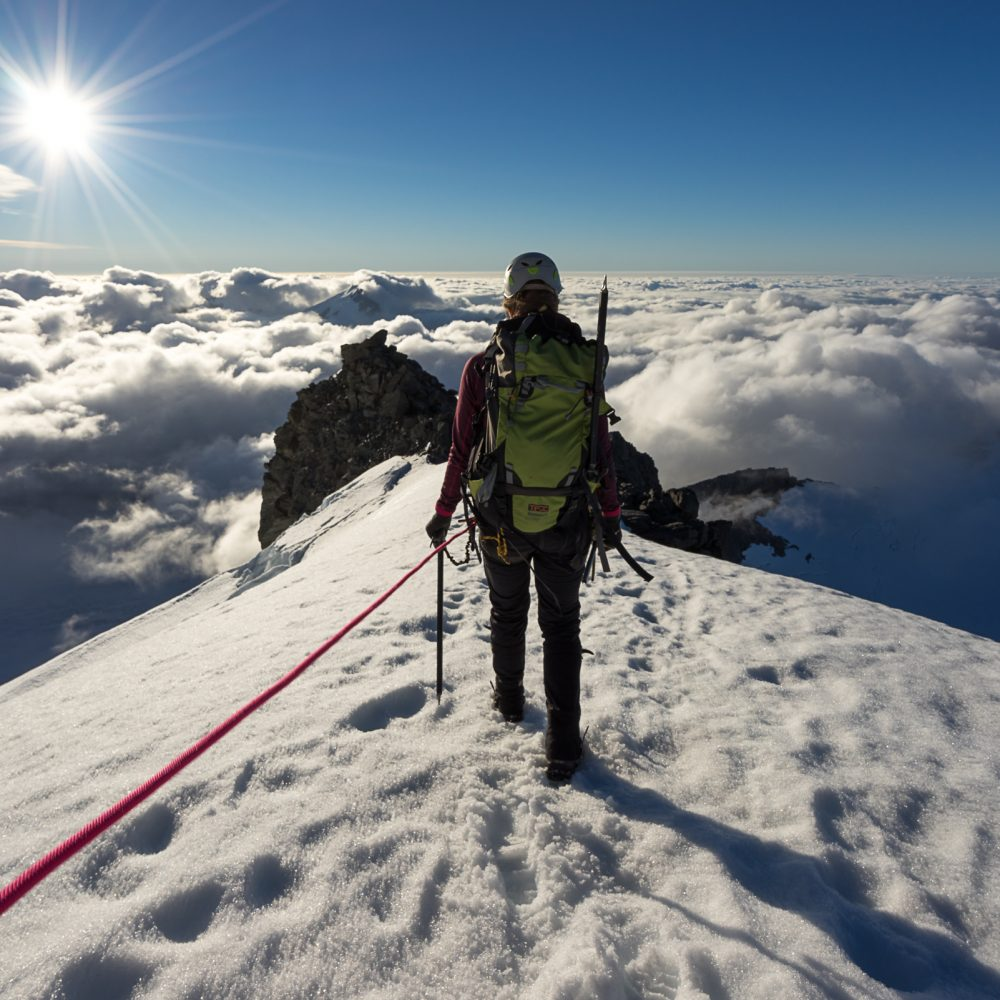high altitude mountaineering provides oxygen depletion and intense physical exertion. Stimulating hormesis